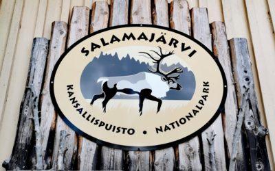 Retkeilyn riemua Salamajärven kansallispuiston lyhyillä rengasreiteillä