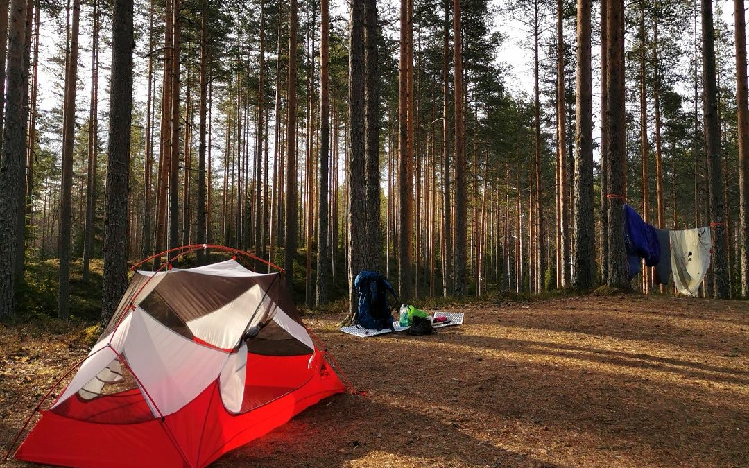 Arpaisten upea harjualue Ähtärissä – erämaasaunan lämpöä ja yö telttakukkulalla
